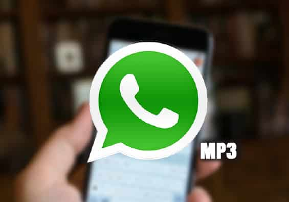 whatsapp mp3 notas de voz guardar