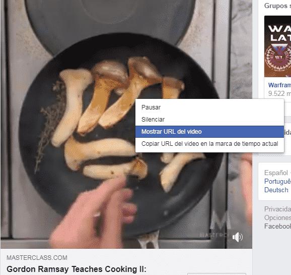 Pasos para descargar Videos de Facebook en la Computadora