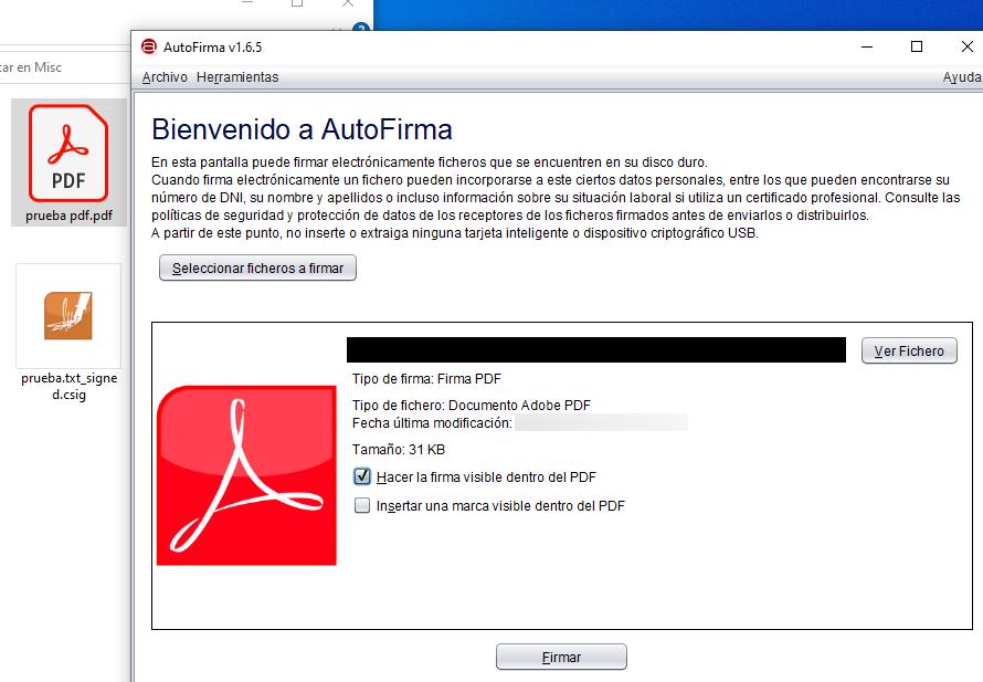 """Ventana de Autofirma después de haberle insertado un archivo PDF. La casilla """"Hacer la firma visible dentro del PDF"""" está marcada."""