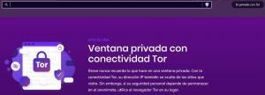 Ventana con Tor del navegador Brave.